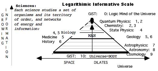 5th dimension informative scale