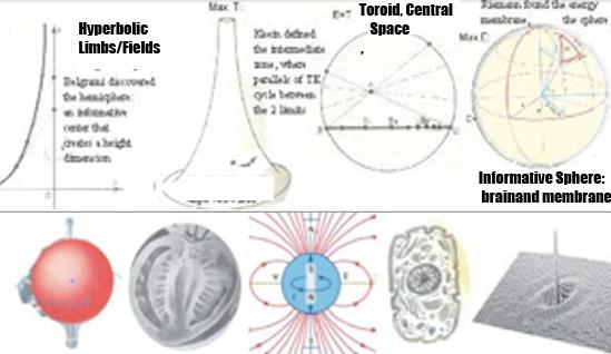 bidimensional topology