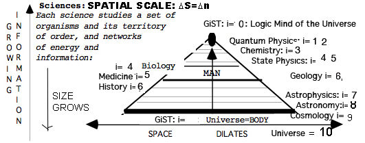 non reversed 5th Dimension