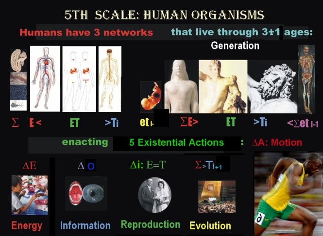 5th bestsn human