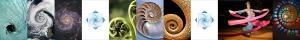 SpiralsBanner7