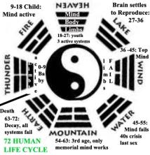 human2 cycle